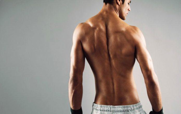 Proteínas para fortalecer músculos